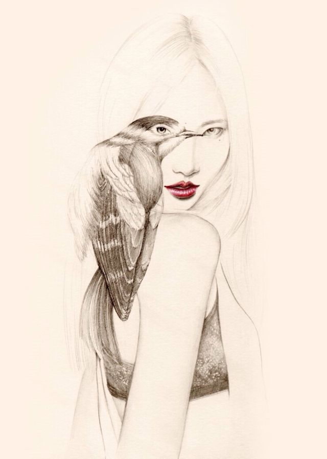 The Girl and The Birds Drawings-7