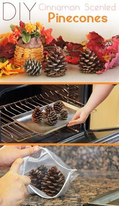 Cinnamon Scented Pinecones make your entire home smell amazing!
