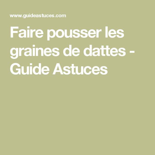 Faire pousser les graines de dattes - Guide Astuces