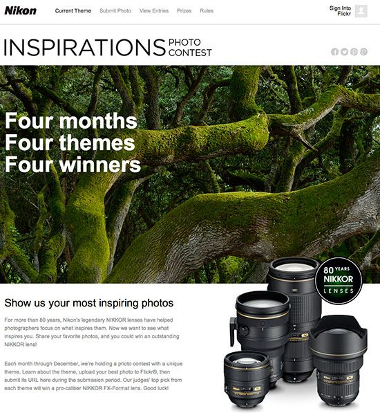 Nikon Inspiration photo contest