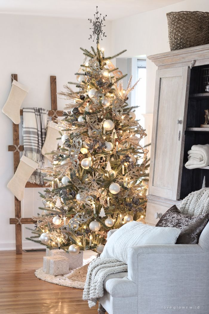 Our Beautiful New Tree Love Grows Wild Rustic Christmas Tree Farmhouse Christmas Tree Christmas Decorations
