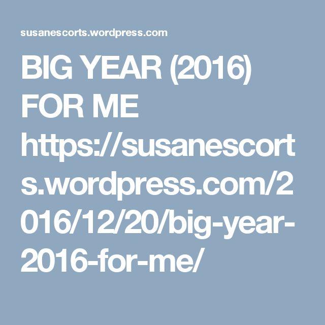 BIG YEAR (2016) FOR ME  https://susanescorts.wordpress.com/2016/12/20/big-year-2016-for-me/
