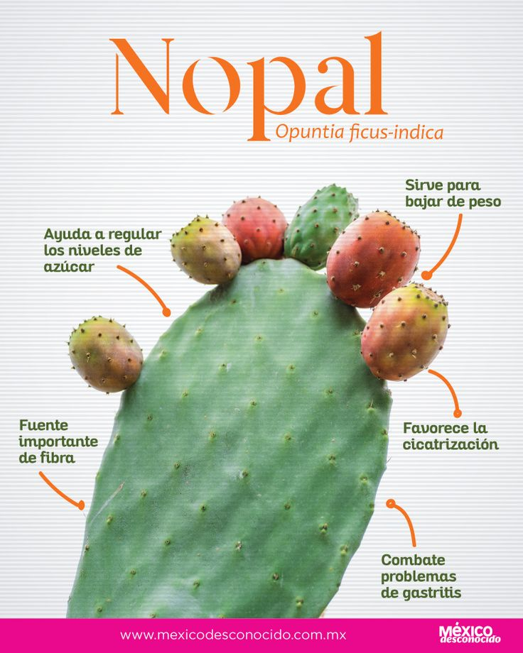 Mexican Food Recipes, Healthy Recipes, Fitness Workout For Women, Health Advice, Plant Based Diet, Natural Medicine, Food Hacks, Home Remedies, Gardening Tips