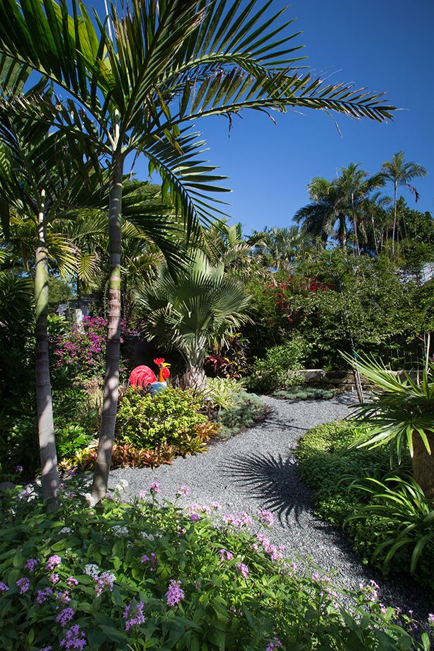 5902 best tropical gardens images on pinterest tropical for Tropical landscape