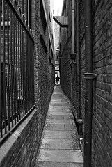Peter Lane Right (Your Funny Uncle) Tags: york england alley yorkshire alleyway snickleway snickelway snickleways snickelways