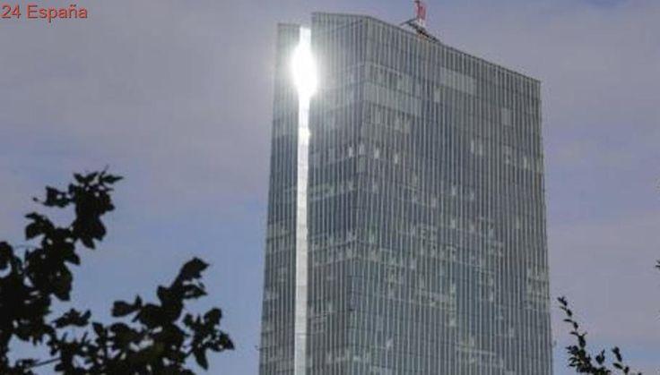 El BCE asegura que las fluctuaciones del tipo de cambio del euro son un motivo de incertidumbre