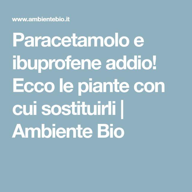 Paracetamolo e ibuprofene addio! Ecco le piante con cui sostituirli   Ambiente Bio