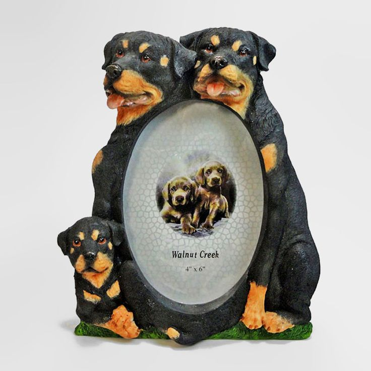 Rottweiler Dogs and Puppy Figurines Tall Polyresin Picture Photo Frame - PFD712L - Rottweiler dogs and puppy tall polyresin dog figurines table or desk photo frame with easel back. Holds one 4 x 6 picture Great gift for your dog lover friend or yourself - FOR SALE at www.ClaudiasBargains.com