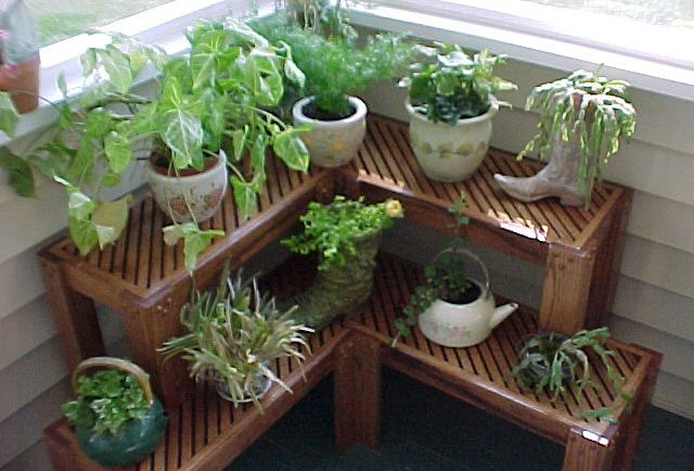 26 Best Images About Plant Stands On Pinterest Gardens
