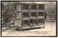 Résultats de recherche d'images pour «clapier lapin beton»