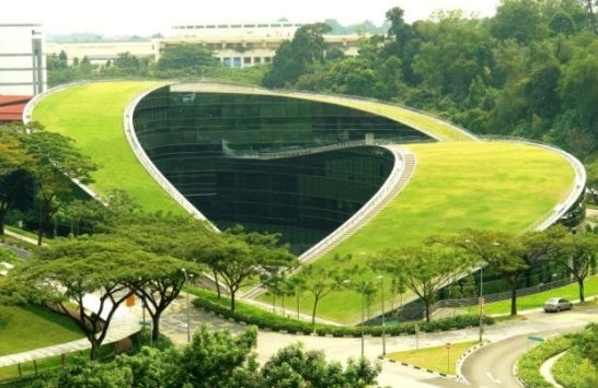sustainable architecture: Green Roofs, Green Building, Art Schools, Artschool, Greenroof, Art Design, Architecture, Roof Gardens, Singapore