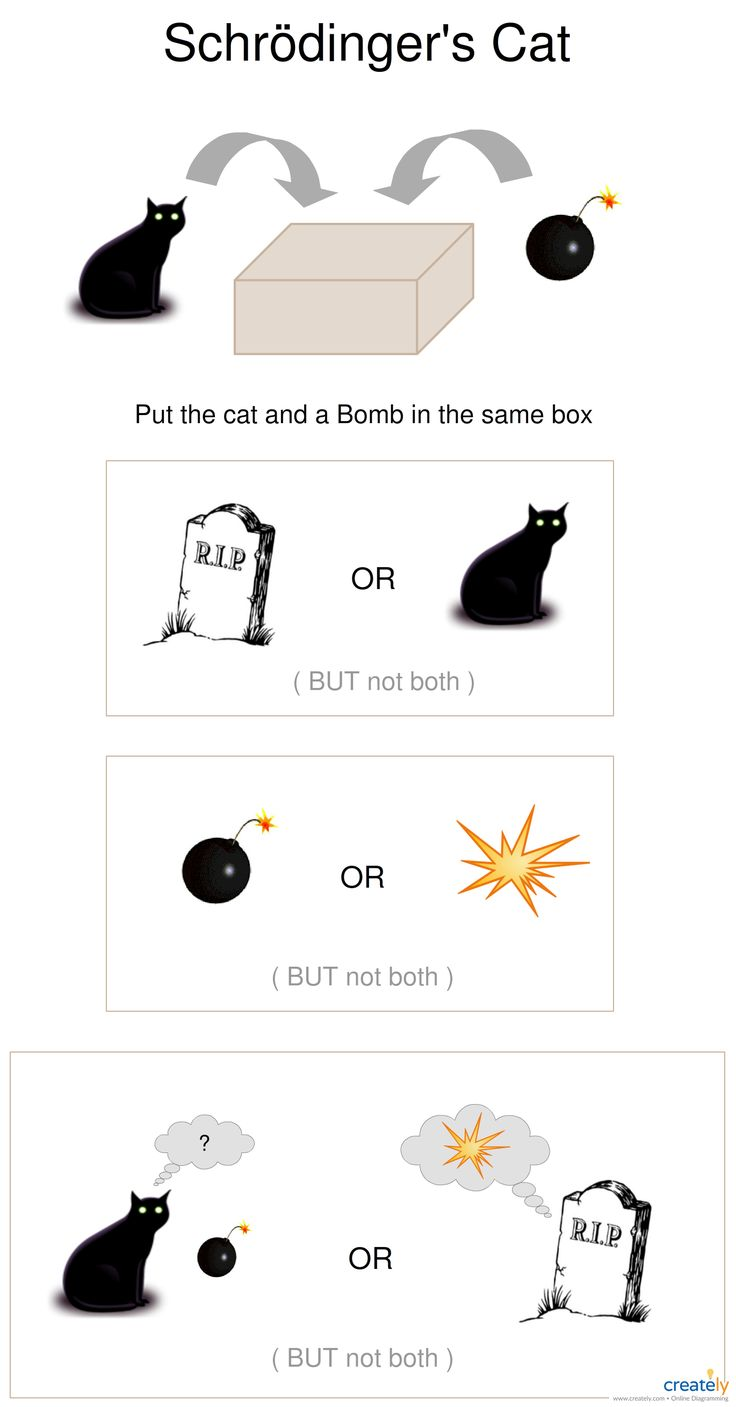 Schrödinger's cat is a famous hypothetical experiment designed to point out a flaw in the Copenhagen interpretation of superposition as it applies to quantum theory. You can use this diagram as a template to explain the theory visually. #schrodinger #quantum #physics
