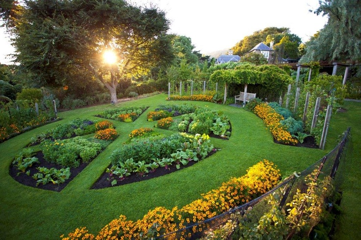 78 images about knot gardens and topiaries on pinterest for Parterre vegetable garden design