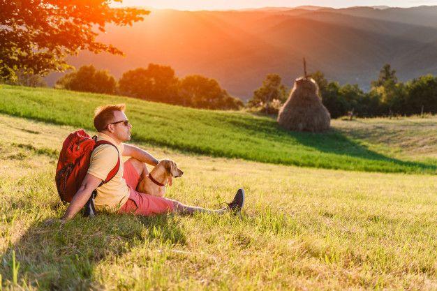 Hombre y perro sentado en un prado de montaña y disfrutando del atardecer Foto Premium | Premium Photo #Freepik #photo #pe… | Hombre perro, Perros, Fotos infantiles