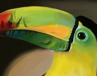 "Check out new work on my @Behance portfolio: ""Tucan Arcoiris - Ilustración Digital"" http://be.net/gallery/33634197/Tucan-Arcoiris-Ilustracion-Digital"