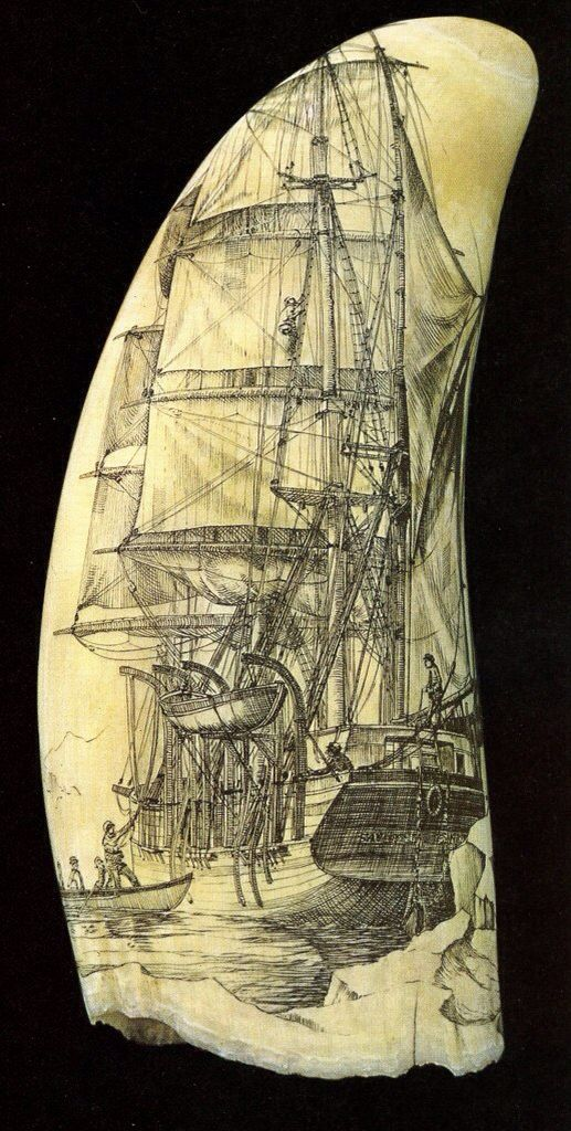 Scrimshaw whale tooth depicting a ship