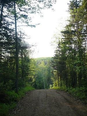 Fort McMurray Adventures: Long Summer Evening Stroll