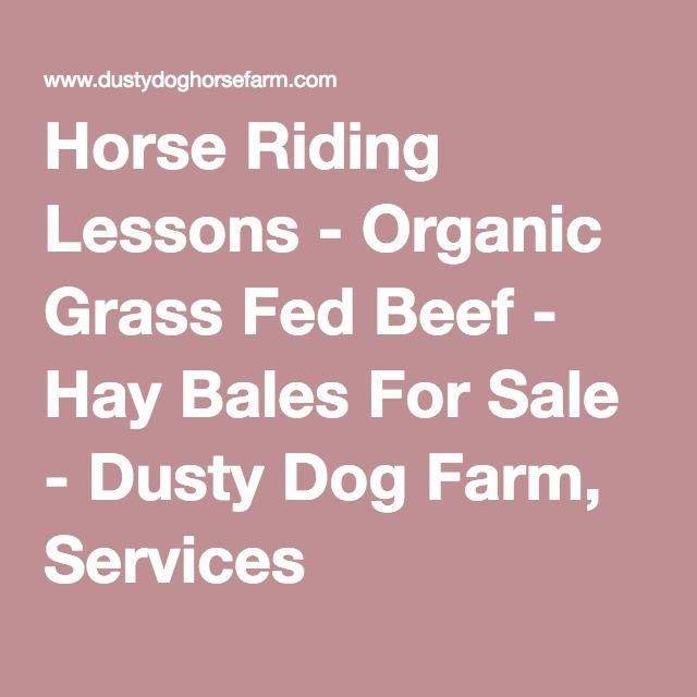 Horse Riding Lessons - Organic Grass Fed Beef - Hay Bales For Sale - Dusty Dog Farm, Services