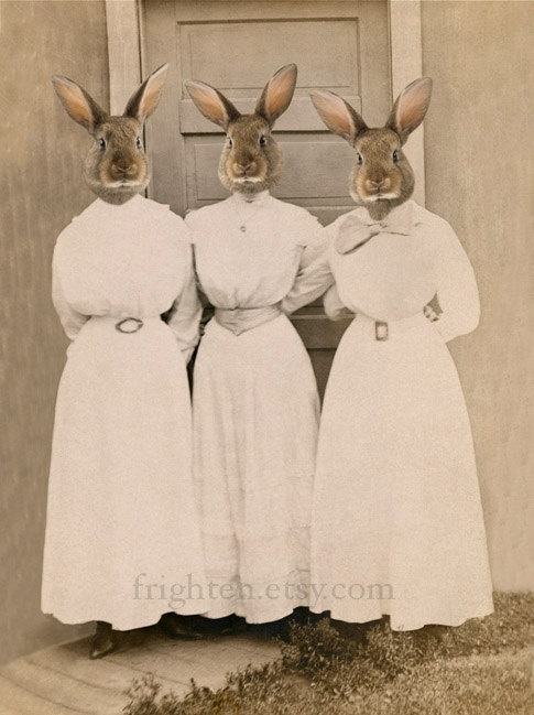 The Sisters Bunn, .  Ladies, rabbit head