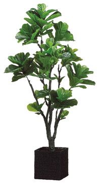 Silk Plants Direct Fiddle Leaf Fig Tree (Pack of 1) traditional-artificial-flowers-plants-and-trees $399