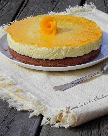Gâteau mousse à la mangue sur génoise au chocolat