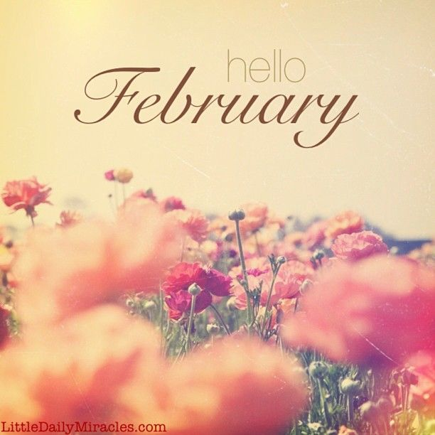 Hello February! | Insta inspo but better typography