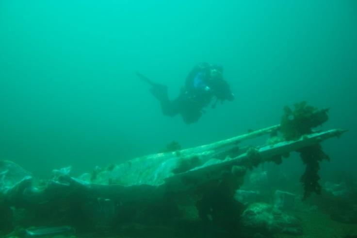 Whale Graveyard    (via www.newfoundlandlabrador.com)