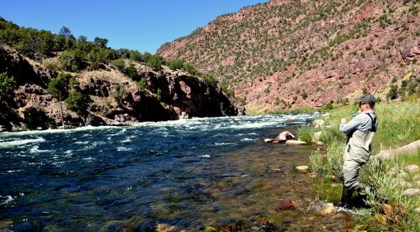 17 best images about fly fishing an art form on for Green river utah fishing