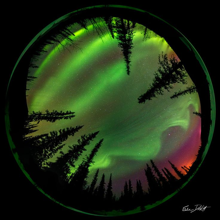 360° View Of The Aurora Borealis Over Chena River Valley