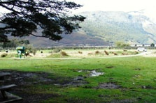 Sylvan campsite at Paradise Valley, near Queenstown.
