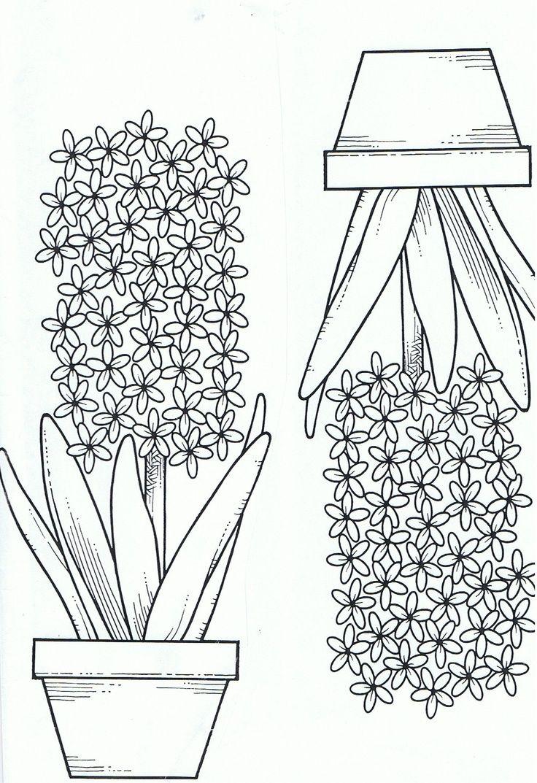 Kleurplaat Hyacint With Images Varityskuva Askartelu Joulu