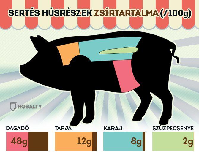 Évekkel ezelőtt a zsírok voltak a fő ellenségeink, ma már szerencsére hallhatunk pozitív élettani szerepükről is. Lássuk, mire figyeljen velük kapcsolatban a fogyni vágyó: http://www.nosalty.hu/ajanlo/fogyni-szeretnek-ehetek-zsirt