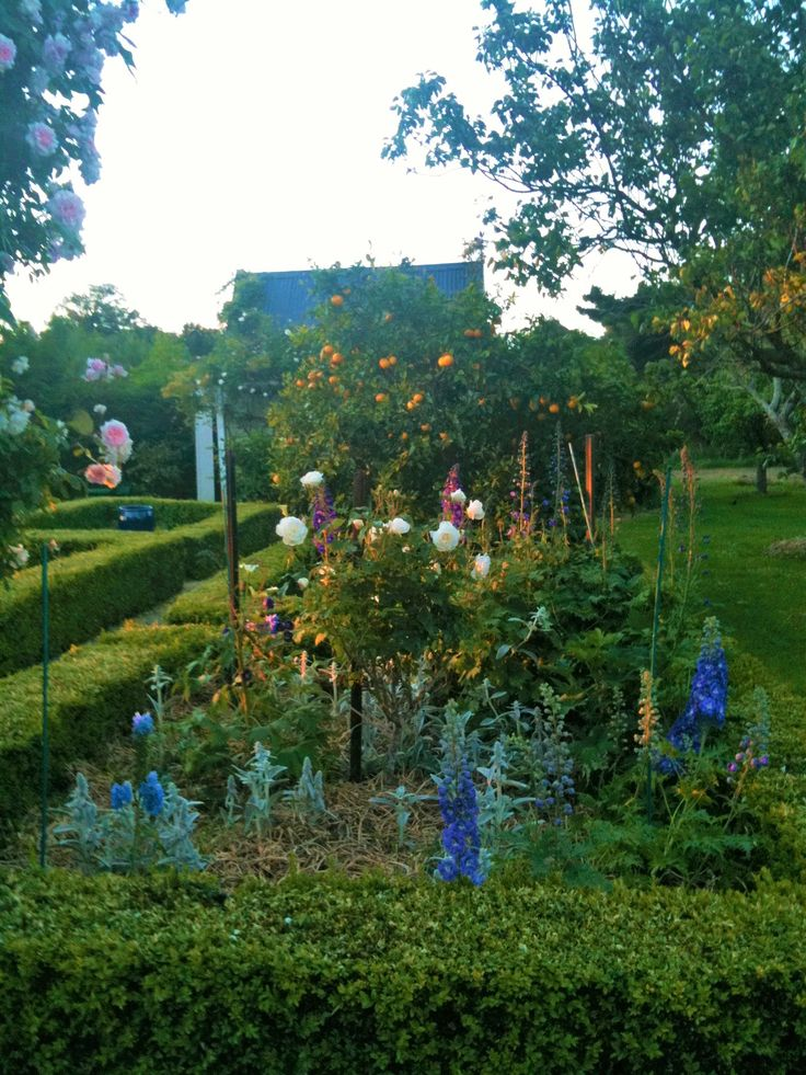 Back garden potagère late afternoon at Lacewood at Tuhitarata Estate. Perfect backdrop for a wedding photo