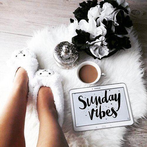 Morning 🌞⚘ . #manha #morning #cafedamanha #breakfast #breakfasttime #domingo #bomdia #sunday #selfie #instaselfie #likeme #me #f4f #work #likes #instagood #selfieday #melike #justnow #dia #buenosdias #positivevibes #flower #whiteflower #gratidão #flor #flordocampo #energiaboa #comecandobemodia #agradecida