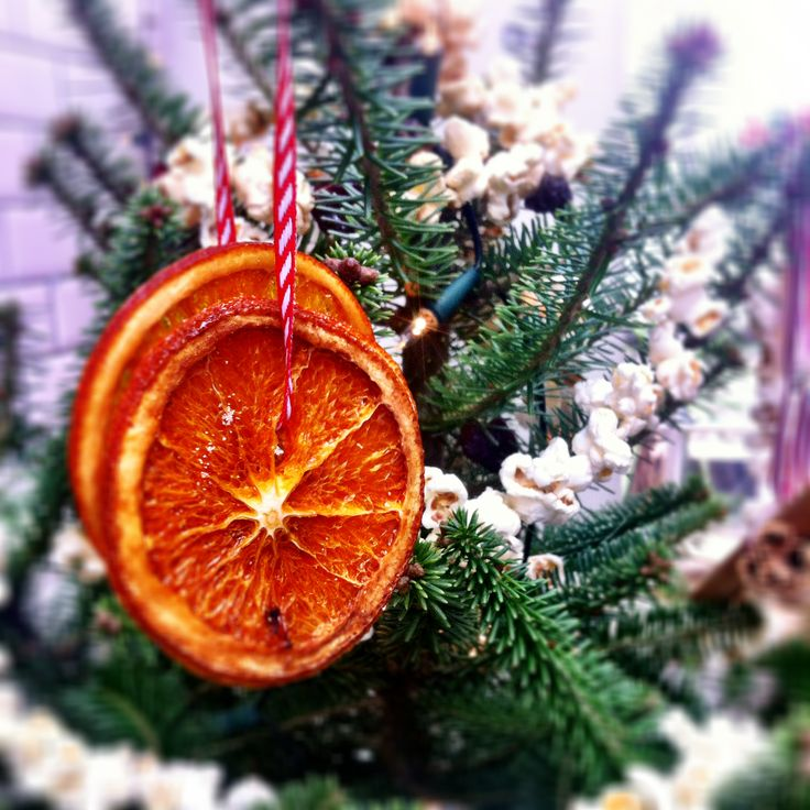 Orange And Lemon Christmas Tree Decorations : For some scented decorations thinly slice oranges