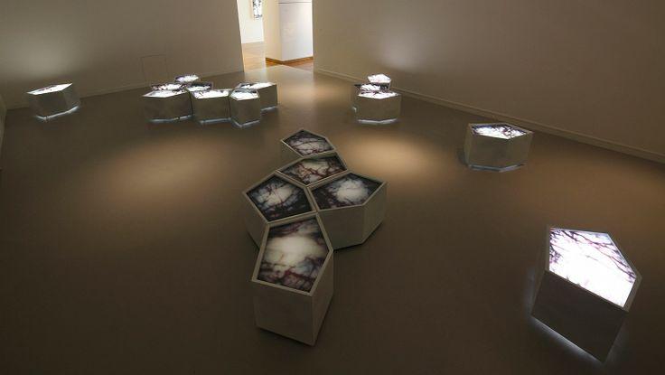Carole Benzaken installation