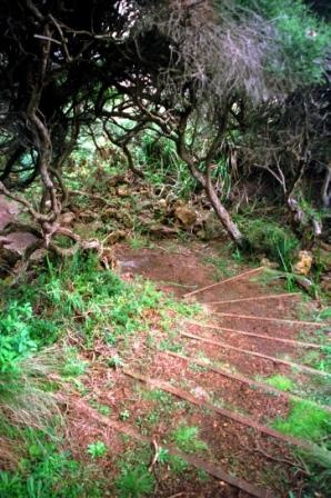 Portland Tourism Association Things to do in #Portland Enchanted Forest