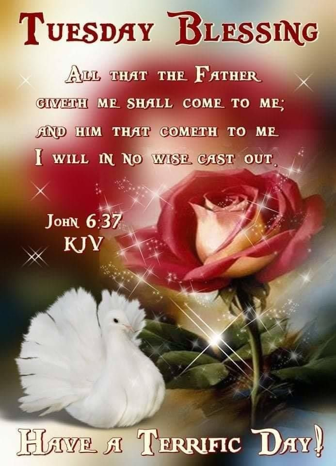 Pin on Jesus Christ