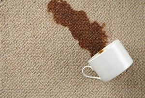 Diy carpet cleaning, coffee spill, clean carpet, clean up coffee spill on carpet