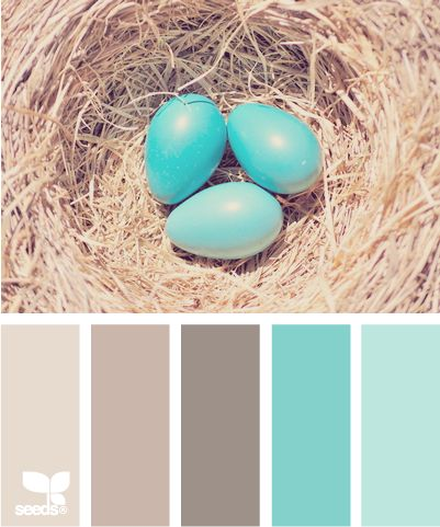 Color: Robins Egg Tones by Design Seeds - light grey, medium grey, dark grey, robin egg blue, light blue.