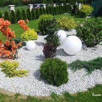 Gentil Rock Garden
