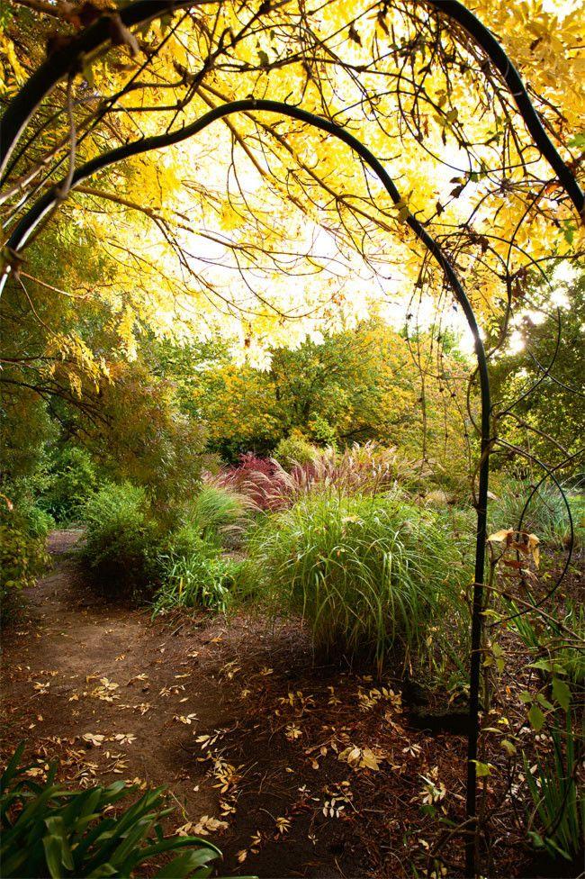 Longford Garden, Tasmania
