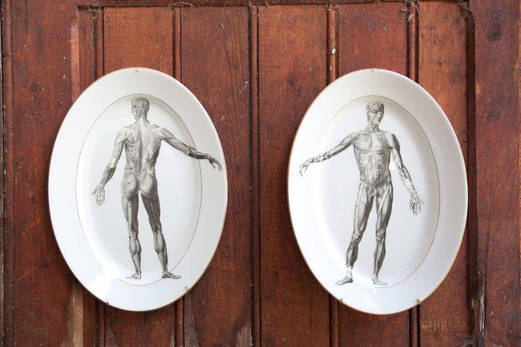 ceramic, illustration, ceramica, enciclopedia vintage Reinterpretazione di stoviglie in ceramica...