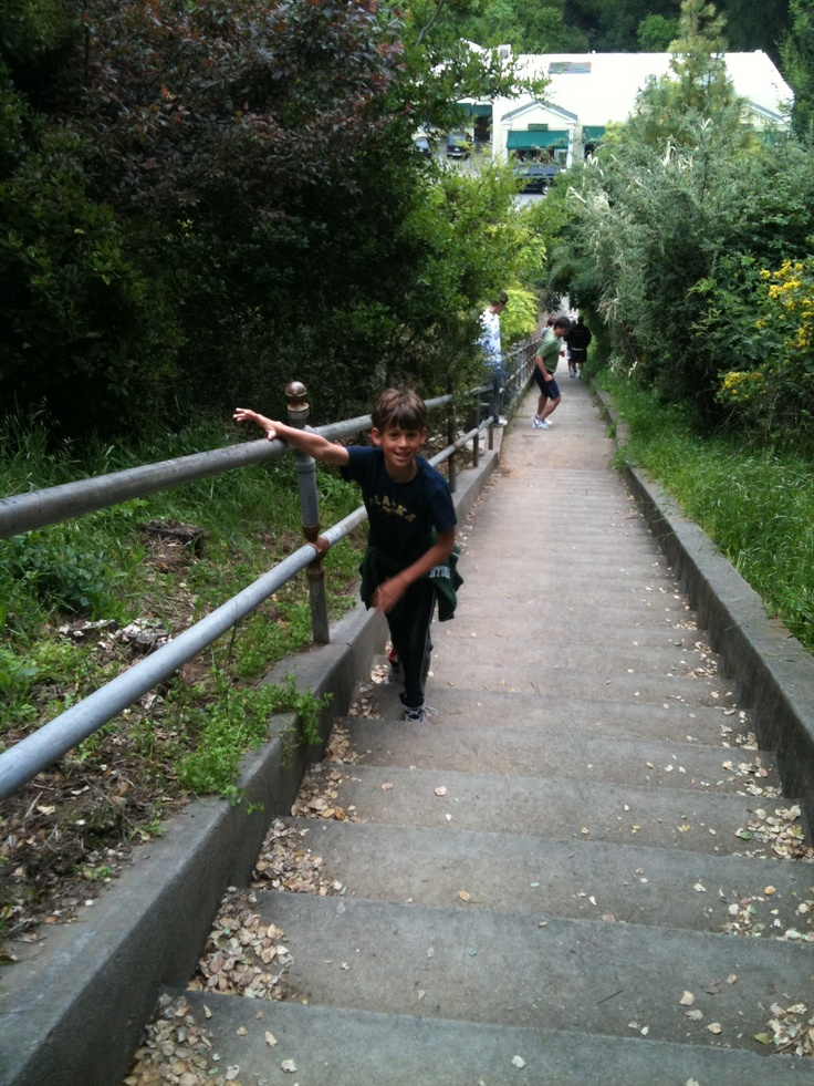 Larkspur steps - a local health workout spot saturday mornings!