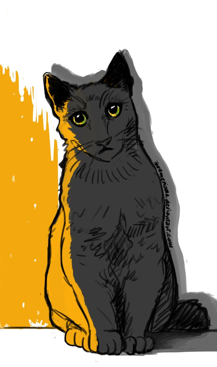 """Giallo"" #giallo #yellow #cat #grey #digitalart #ibramepiuma"