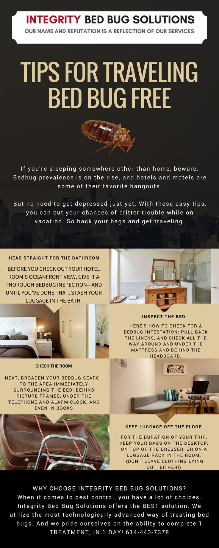 Pin by Integrity Bed Bug Solutions on Bed Bug Education