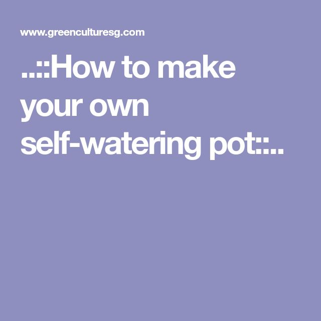 ..::How to make your own self-watering pot::..