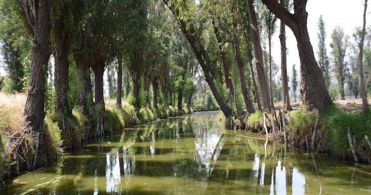 Construirán parque ecológico en Tláhuac