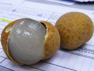 benefits of longan fruit