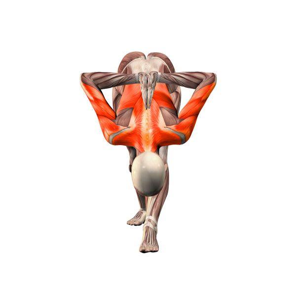 ૐ YOGA ૐArdha Parsvottanasana ૐ Extensión intensa con Manos detrás de la espalda en Namaste. Yoga Poses | YOGA.com